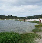 Carta defende urgência na preservação do Parque Metropolitano do Abaeté