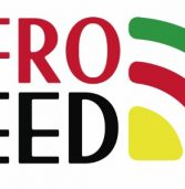2ª temporada do AfroFeed estreia nesta quinta-feira, 11