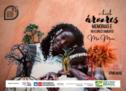 """MoMaie lança E-book """"Árvores, Memórias e Reflorestamento"""" com relatos que evidenciam a cultura popular Africana e Brasileira"""