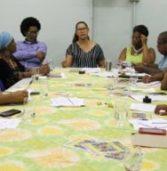 Conselho de Desenvolvimento da Comunidade Negra abre eleições em formato virtual